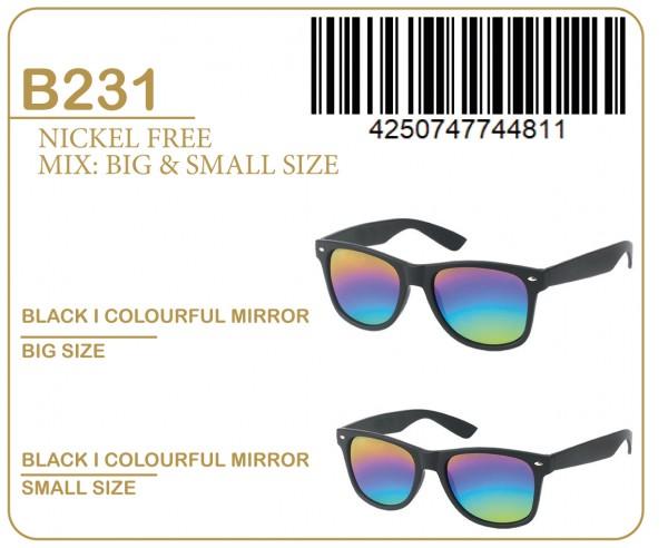 Sonnenbrille KOST Basic B231